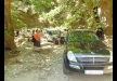 Thassos Off Road 4X4 Safari gallery thumbnail
