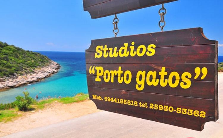 Porto Gatos Studios